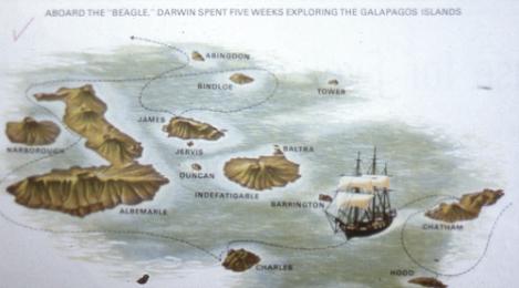 darwin_routebeagle